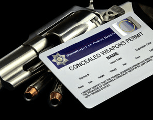 concealed carry classes florida